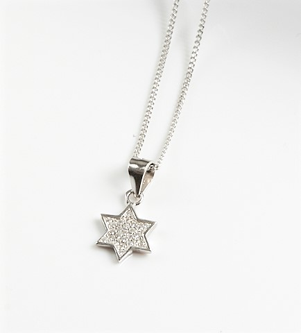 Callel 925 Sterling Silver Clear CZ Star Pendant Necklace