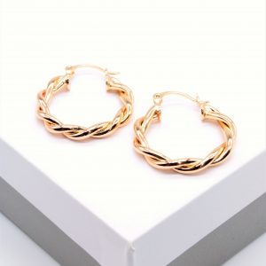 Twisted Hoop Creole Earrings